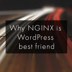 Why nginx is WordPress Hosting's Best Friend