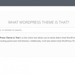 How to Tell Which WordPress Theme a Website is Using