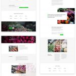 Free Divi Download: Get Our Fresh Farmers Market Layout Pack Today!