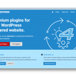 Challenges In Growing A WordPress Plugin Business Without Growing A Team