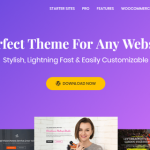 10+ Best Free Gutenberg Compatible WordPress Themes In 2019