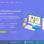 Freemius provides all the tools to sell WordPress plugins and themes