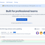 GitHub vs Bitbucket: Which is Right for Your Development Team?