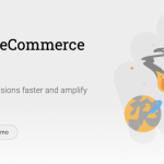 Metrilo for WooCommerce: An Overview and Review